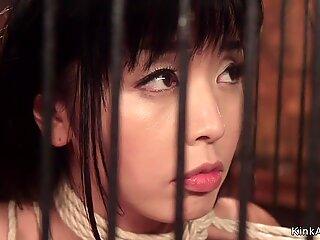Petite Asian lesbian anal banged lezdom